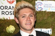 Niall Horan Says One Direction 'Will Be Back'