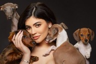 Kylie Jenner Skipped the AMAs Because Her Dog Bambi Had Puppies