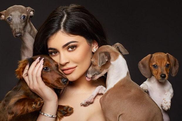 kylie-jenner-dogs-112116