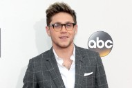 2016 American Music Awards: Niall Horan Attends His First Award Show Since Going Solo