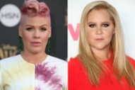 Pink Blasts 'Racist' Donald Trump Supporters as Amy Schumer Reveals She's Not Leaving the Country After All