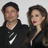 Brad Pitt Demanding Joint Custody