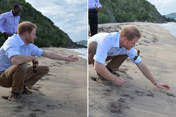 Prince Harry Visits the Beach on His Caribbean Tour