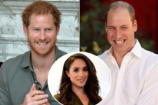 Prince Harry Introduced Girlfriend Meghan Markle to Prince William