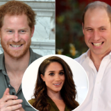 Prince Harry Introduced Meghan Markle to Prince William