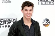 2016 American Music Awards: Shawn Mendes Keeps It Casual on the Red Carpet