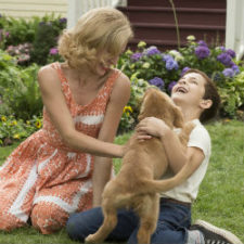 Abuse on 'A Dog's Purpose' Set?
