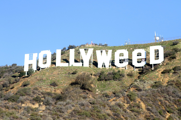 hollywood hollyweed sign