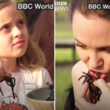 Angelina Jolie Cooks, Eats Spiders and Scorpions