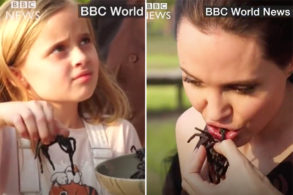 Watch Angelina Jolie Eat a Spider