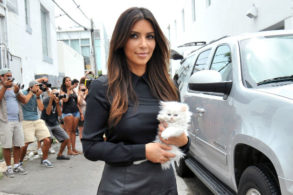 There's a Kardashian-Inspired Show About Cats