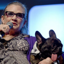 Who Has Carrie Fisher's Dog?