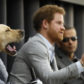 Prince Harry leads a panel discussion with three former members of the UK and US Armed Forces with a dog