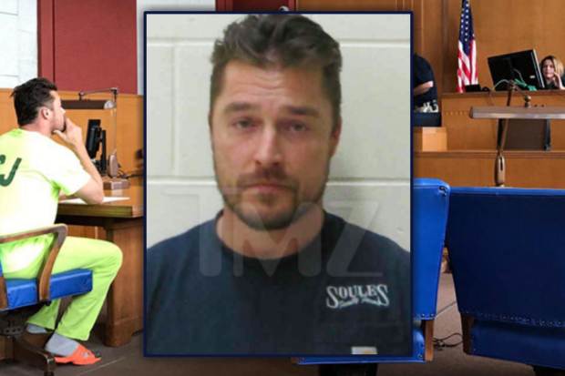 'The Bachelor' Star Chris Soules Gets Arrested After Causing Fatal Car Crash