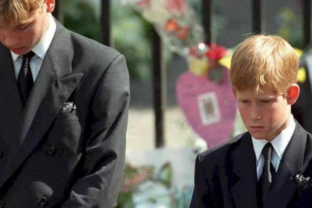 Prince Harry's Heartbreaking Reveal About Mental Health After Mom Died