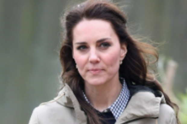 Kate Middleton Wants Topless Photos of Her Removed!