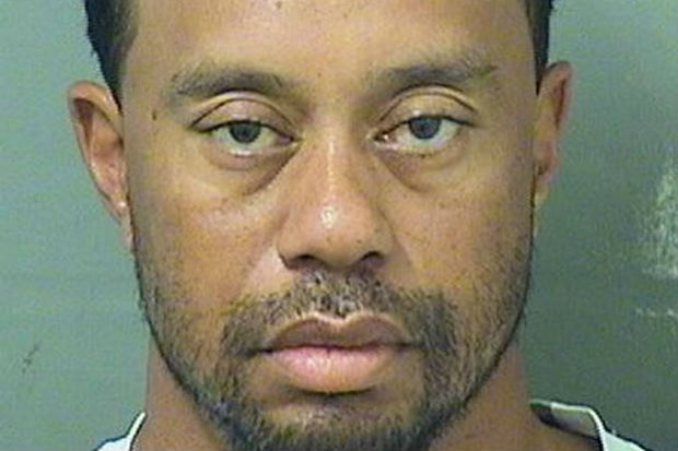 Tiger Woods Arrest dui mugshot