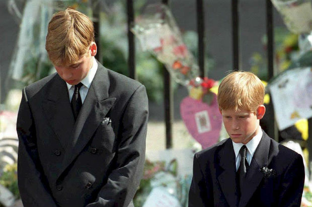 Prince William Prince Harry princess diana funeral