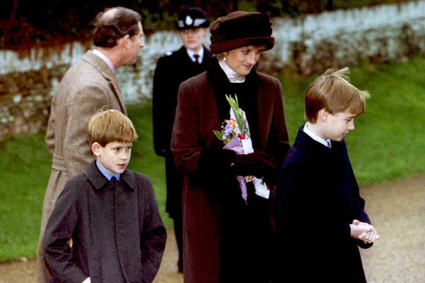 prince william prince harry princess diana young kids before death family