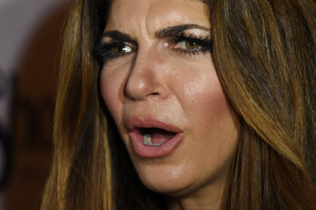 RHONJ Cheating Scandal: Teresa Guidice's Sexts Exposed