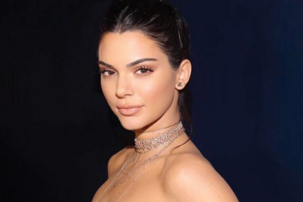Kendall Jenner Poses Nude in New IG, but What's in Her Hand Has Fans FUMING