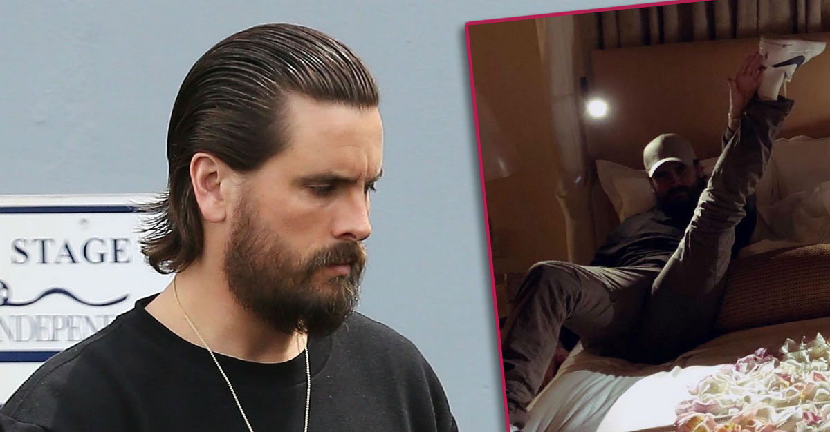 Scott Disick's Romantic Surprise for Sofia Richie Leads Today's Star Sightings