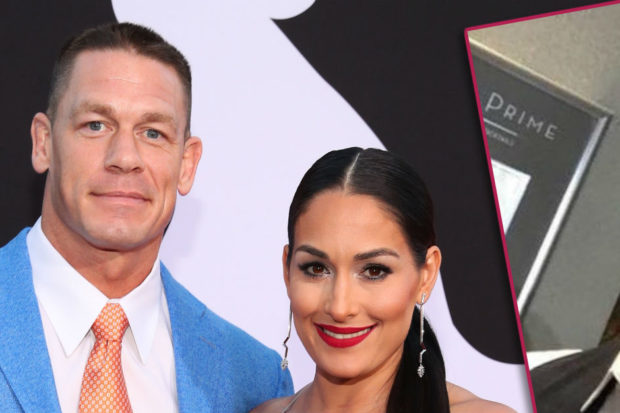 john cena nikki bella post breakup split beard goatee mustache facial hair