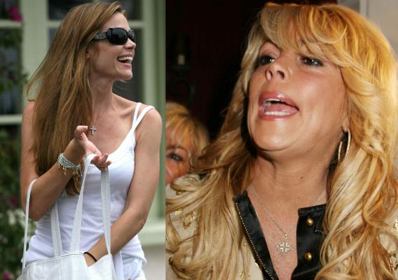 Denise Richards Beats Dina Lohan in a TKO