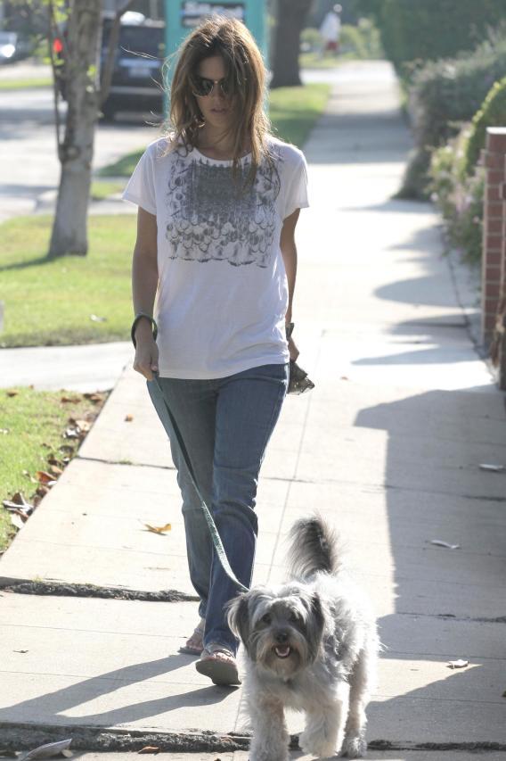 Rachel Bilson's Doggone Hair Scare