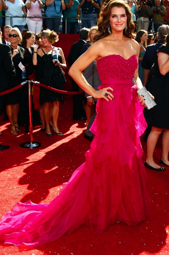 Emmy Awards Red Carpet Sea of Beauty