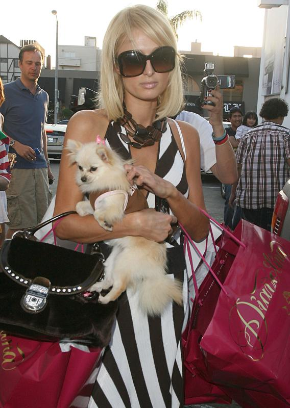 It's Not Such a Dog-Eat-Dog World for Paris Hilton