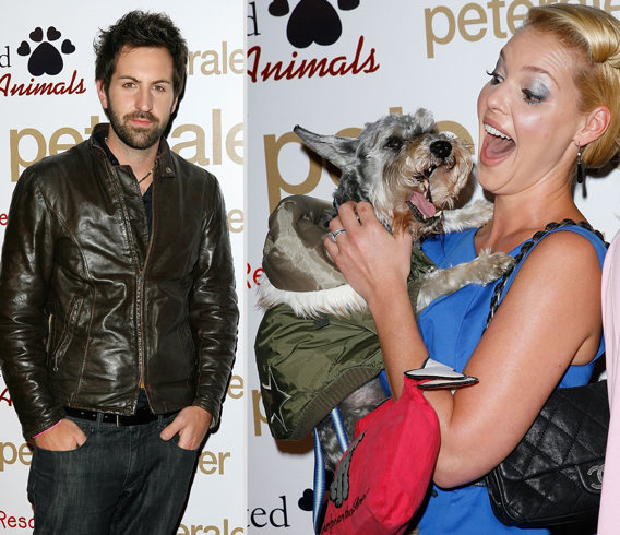 Heigl Facing Homicide for Pooch Posse