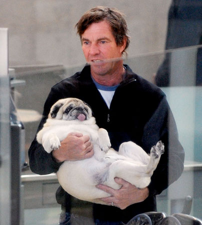 Dennis Quaid carries his pug through security.