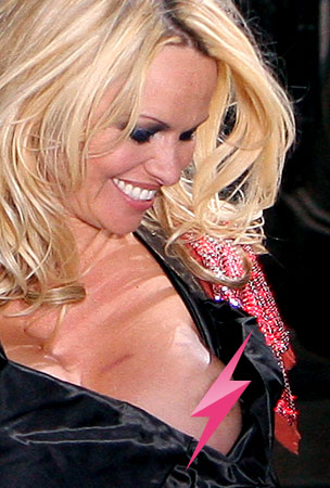Pamela Anderson: If I Could Talk to the Areolas