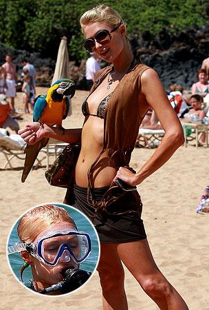 Paris Hilton Makes a New Friend in Hawaii