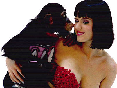 Katy Perry Assailed By Monkey Pee