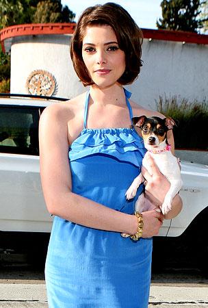 Ashley Greene Does Some Heavy Petting