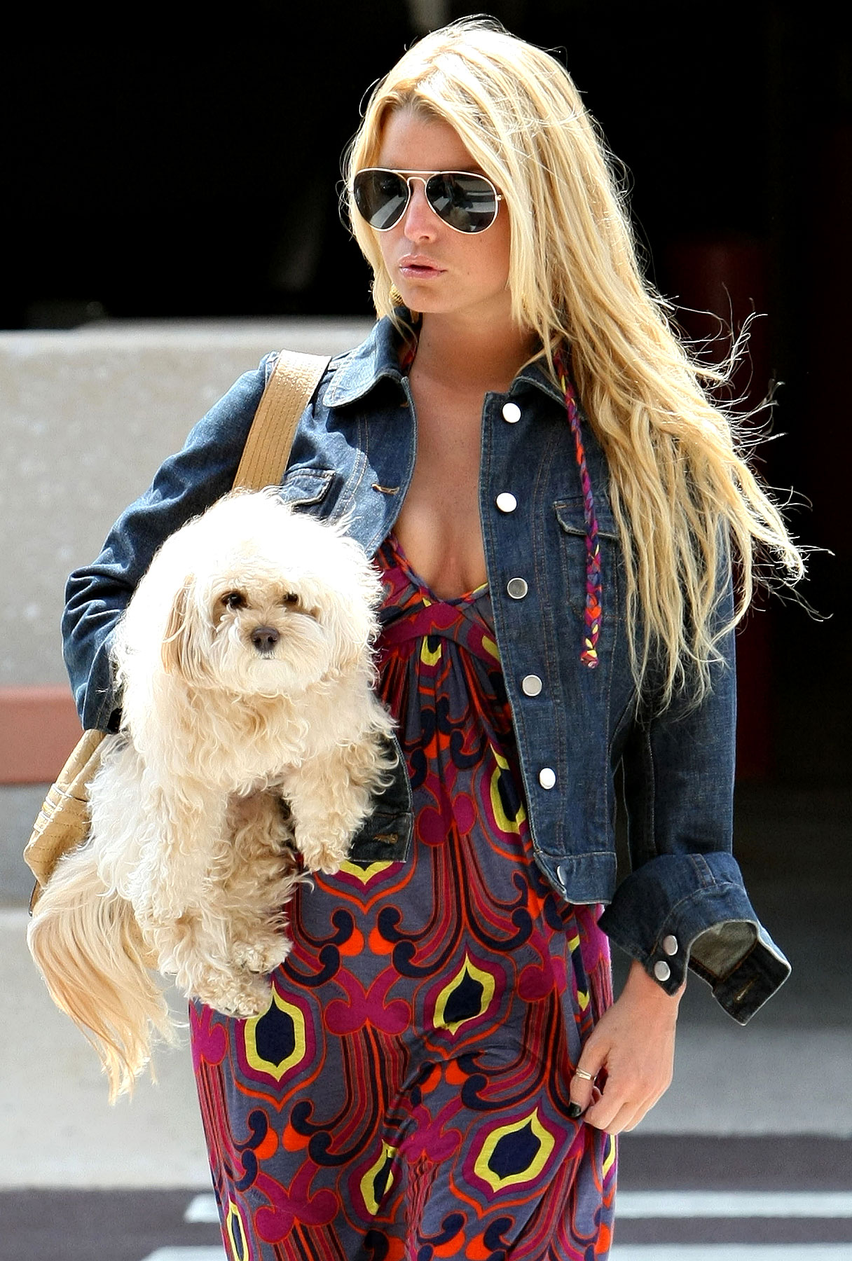 Search Mission Called Off for Jessica Simpson's Dog