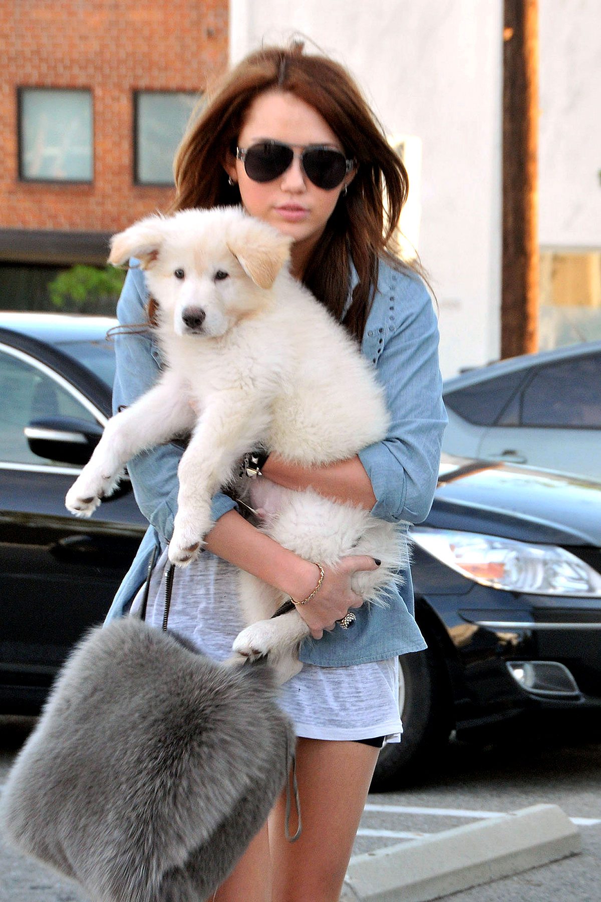 Miley Cyrus Hijacks Puppy's Cuteness In Blatant Attempt at Image Control (PHOTOS)