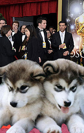 10 Odd Things We'd Like To See At This Year's Oscars (PHOTOS)