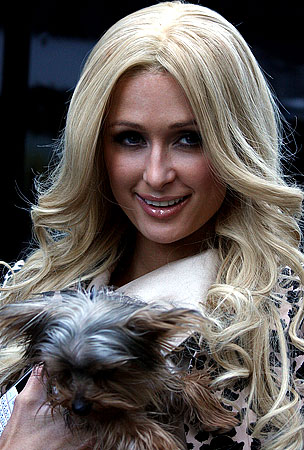 Paris Hilton Wants To Punch Dog-Fighting Fans In The Face