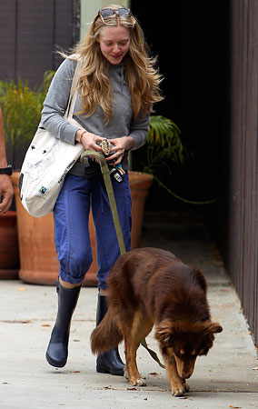 Amanda Seyfried Walks the Dog Without Makeup (PHOTOS)