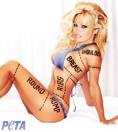 Pamela Anderson's New PETA Ad Is Too Hot for Canada