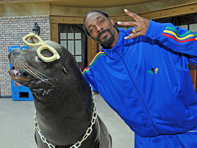 Snoop Dogg Seals the Deal at SeaWorld-photo