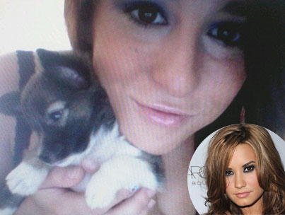 Who Is Alex Welch, Demi Lovato's Alleged Victim?-photo