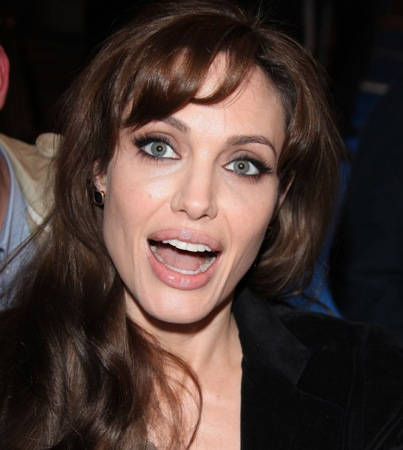 Angelina Jolie Called 'Ignorant' by Bosnian War Victims